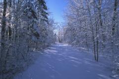 Winter Scene - Rural Carlton County