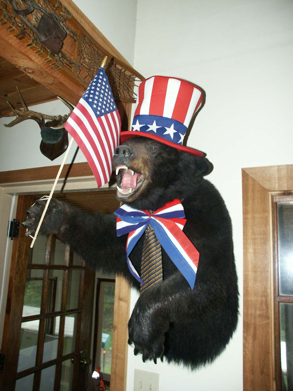 July 4th Bear