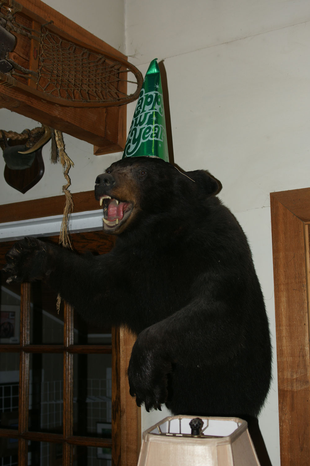 New Year's Bear