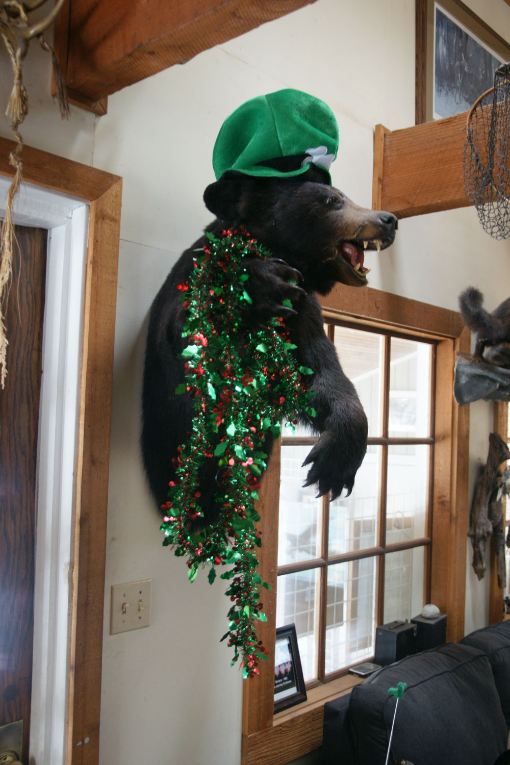 Saint Patrick's Day Bear