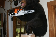 Logging Bear