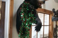 Saint Patrick's Day Bear